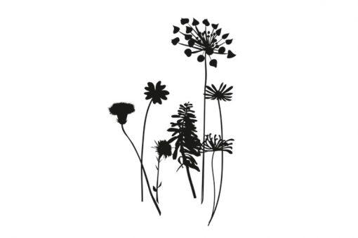 flora-web