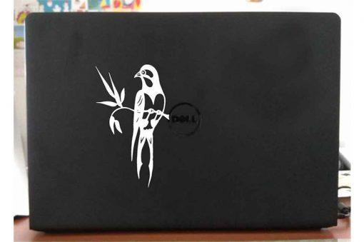 laptop-bird