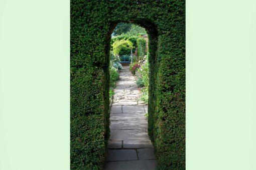 wallpaper-garden-tunnel-web