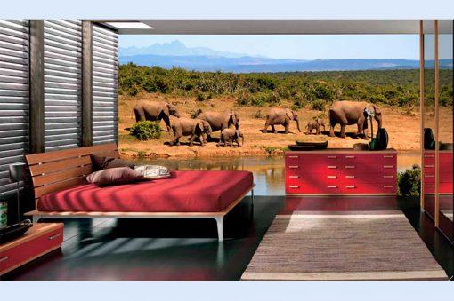 wallpaper-savannah-preview