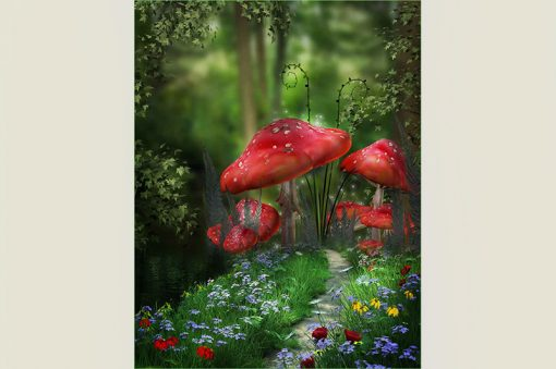 wallpaper-mushrooms-in-the-forest-web