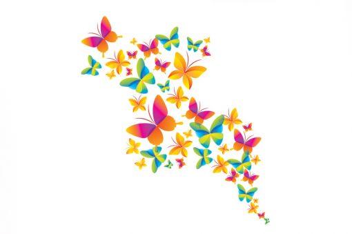 sticker-flock-of-butterflies-web