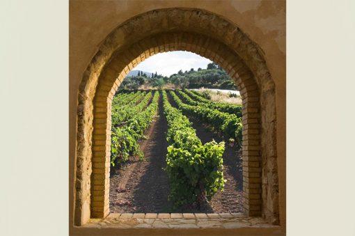 wallpaper-tuscany-web
